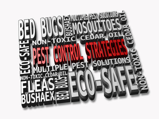 Pest Control Strategies